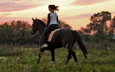 passeio-a-cavalo-1.jpg